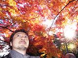 燃えるような紅葉。