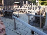 大晦日泉岳寺お参り。